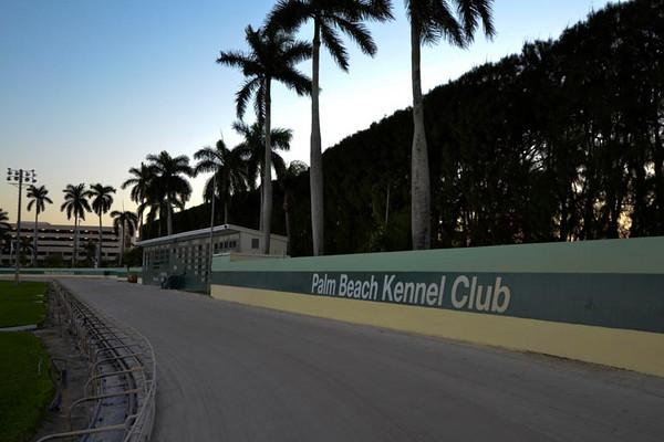 Article image for: DOWN THE STRETCH AT PALM BEACH KENNEL CLUB
