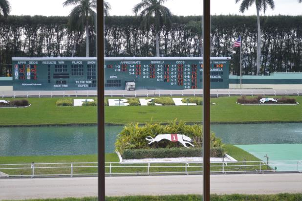 Article image for: PALM BEACH KENNEL CLUB CIRCUIT DAY 2 UPDATES