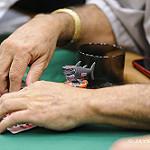 Humberto Brenes Shark Chip Protector